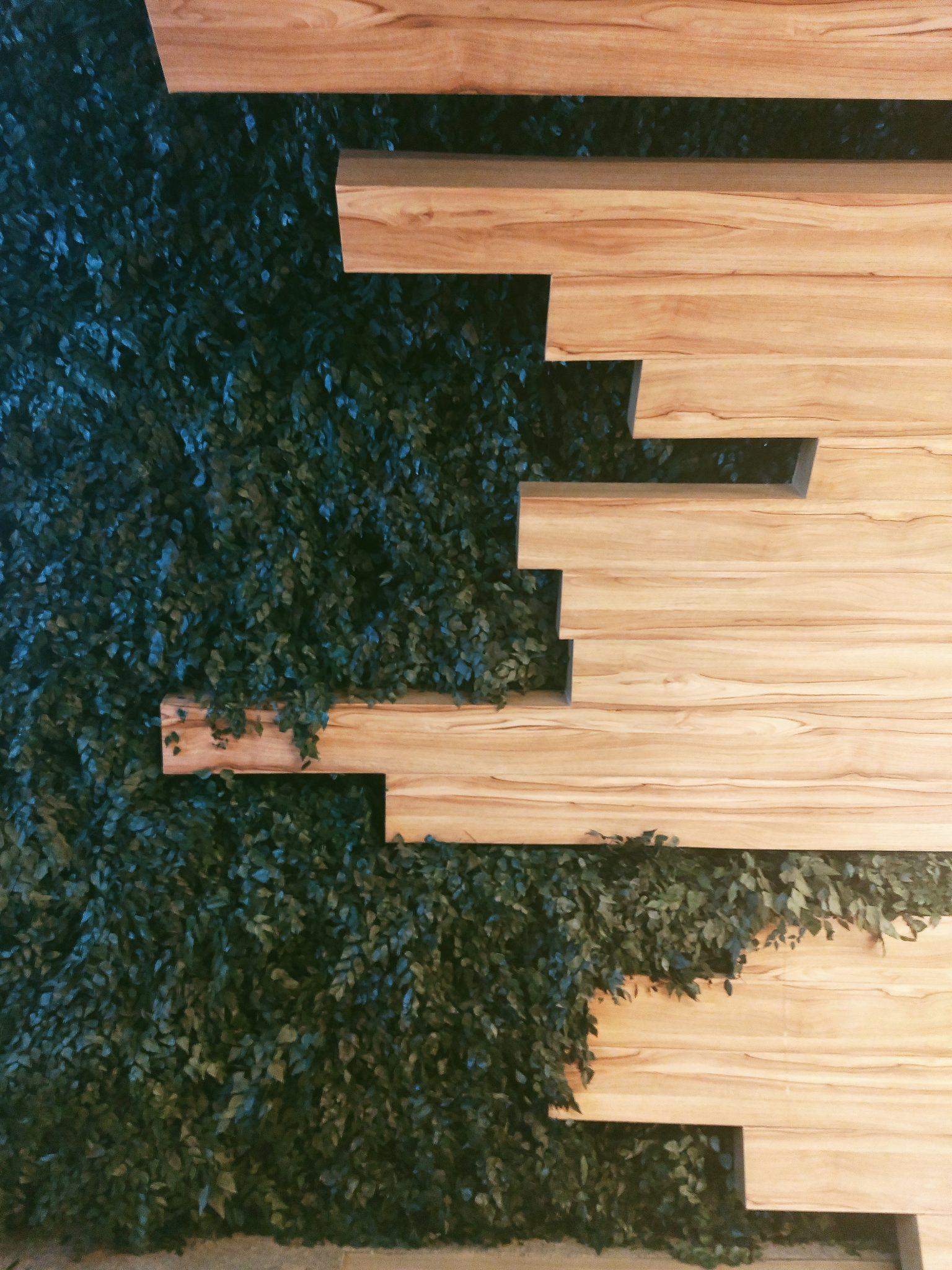 """As plantas na parede são ideais para interiores porque sofreram um processo que agora é tendência conhecido como """"desidratação"""""""