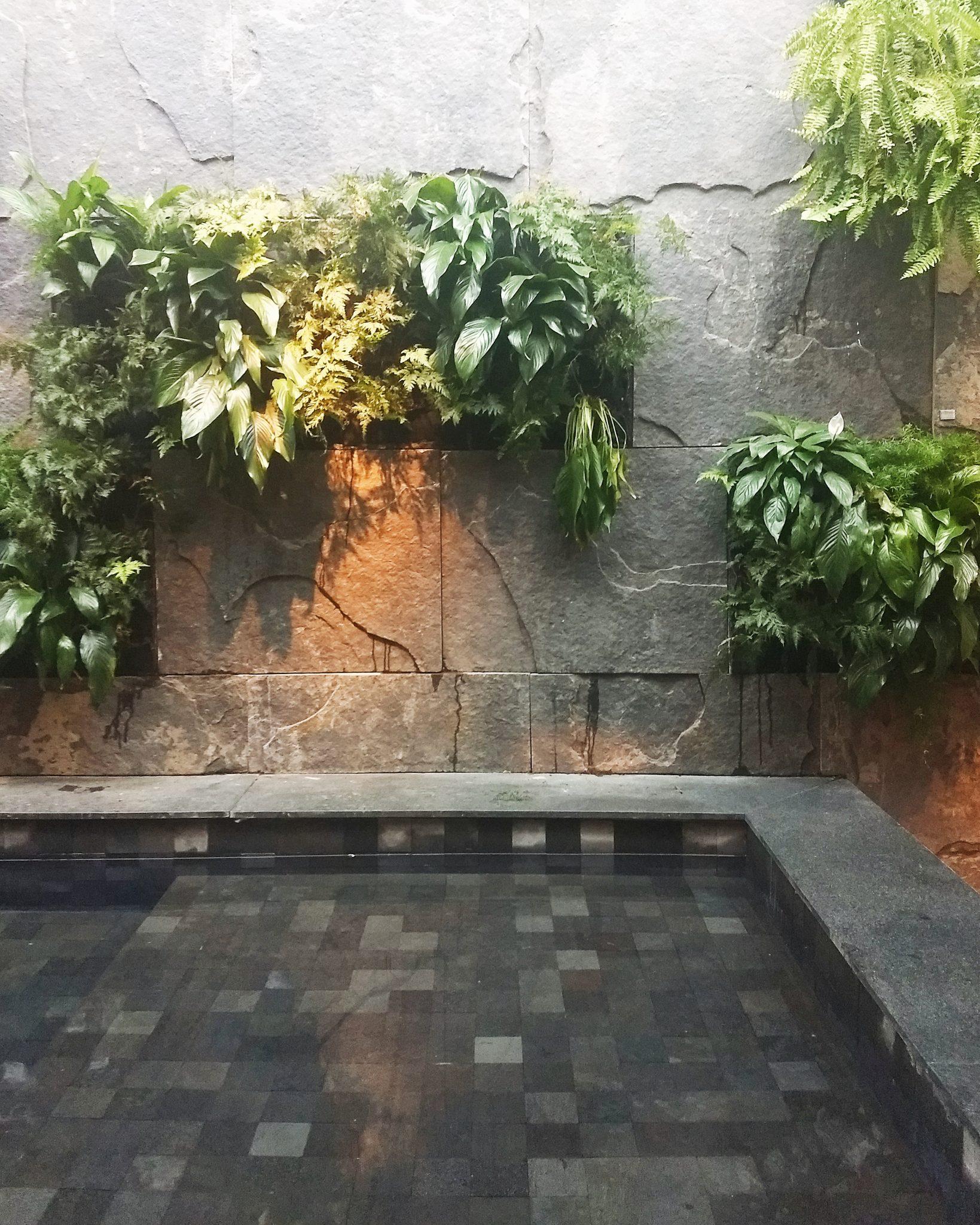 Jardim com piscina onde eu queria ter ficado até o final da mostra hehe