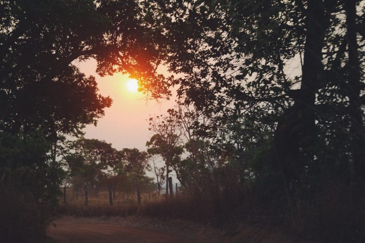 por-do-sol-na-estrada